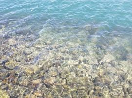 The water clarity is crazy