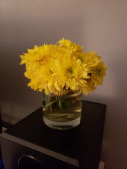 I bought these flowers two weeks ago and they are still kickin' it and making me smile.