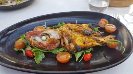 Carolyn's fish